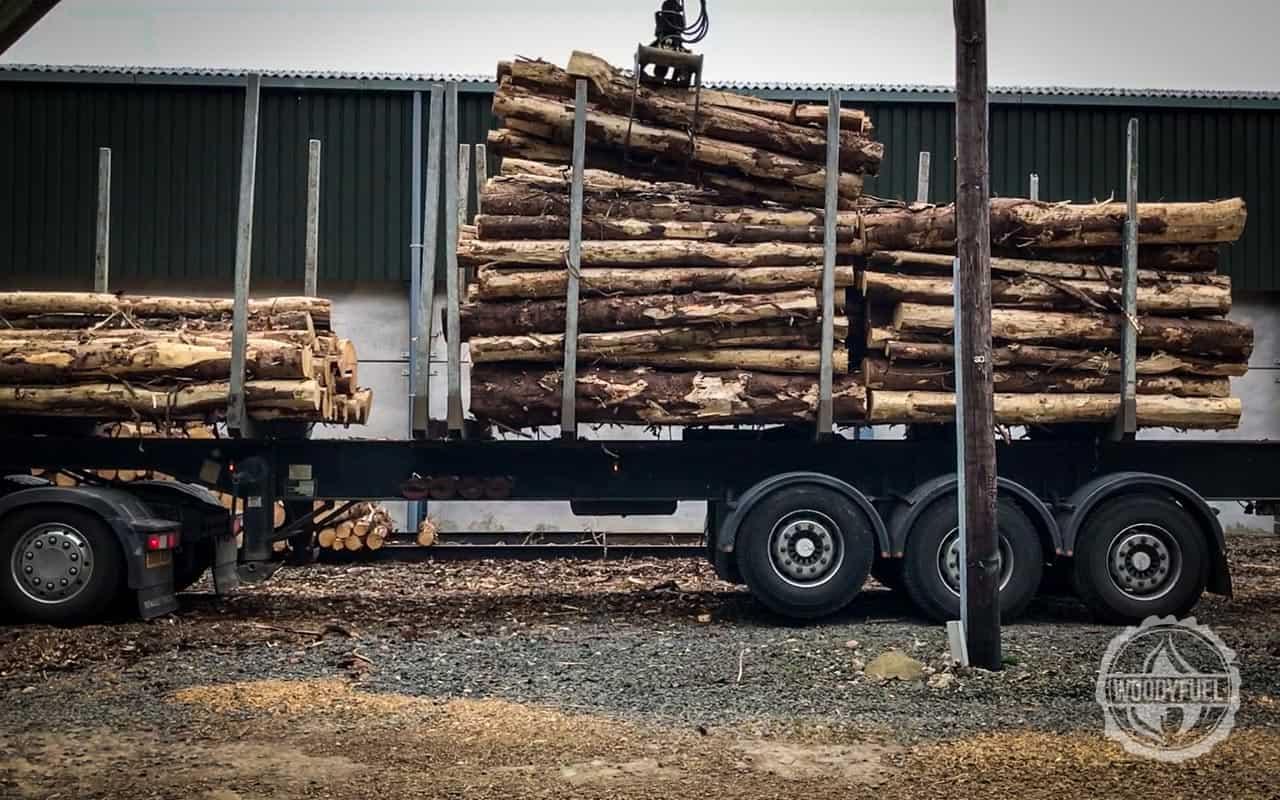 woodyfuel-wood-fuel-biomass-supplier-3