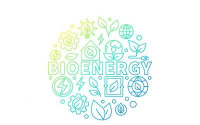 How to Save on Energy – Biomass Energy Advantages and Disadvantages