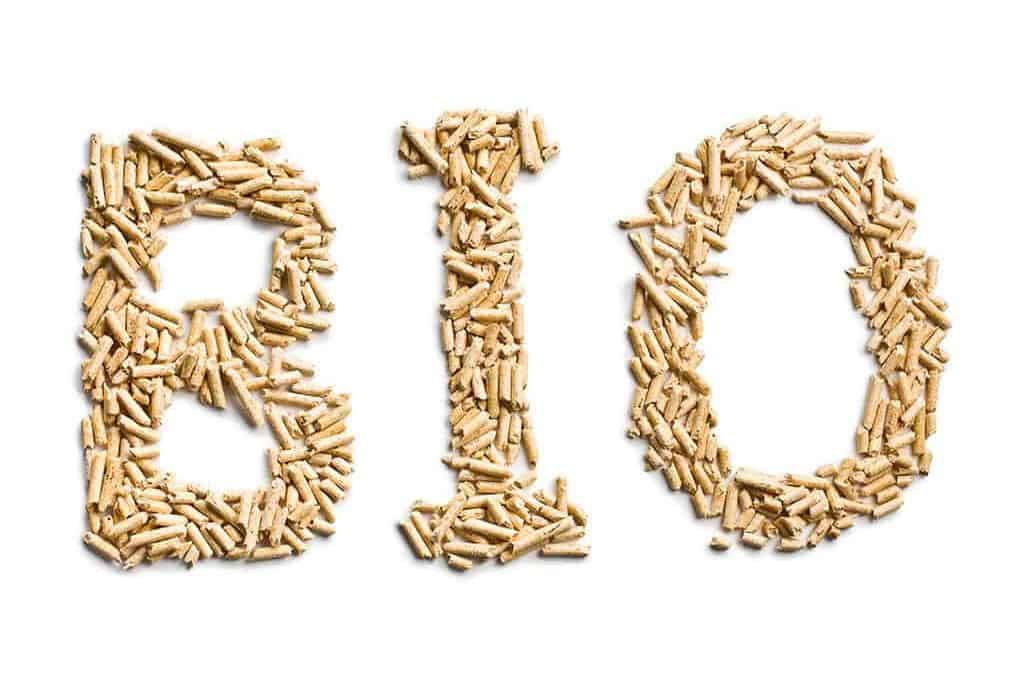 Wood Pellets: A Biomass Technology to Efficiently Power Your Business