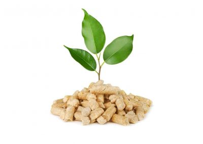 buy-wood-pellets