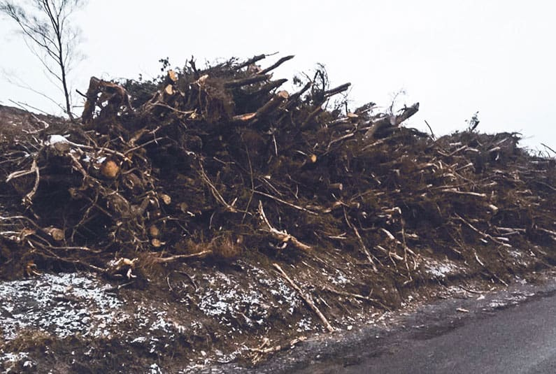 pile of trees and branches prepared for brash removal