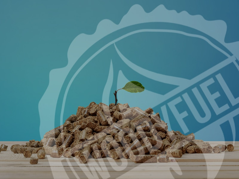 Is Biomass Wood Fuel Sustainable?
