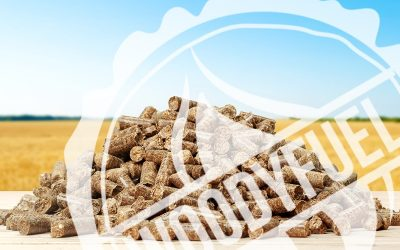 Pellet – the fuel of the XXI century!
