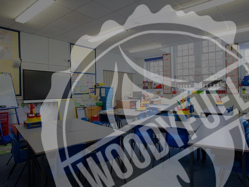 Wood Fuel Heating in North East Schools
