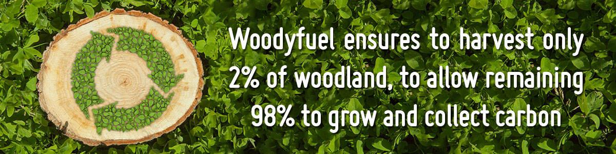 green biomass energy banner