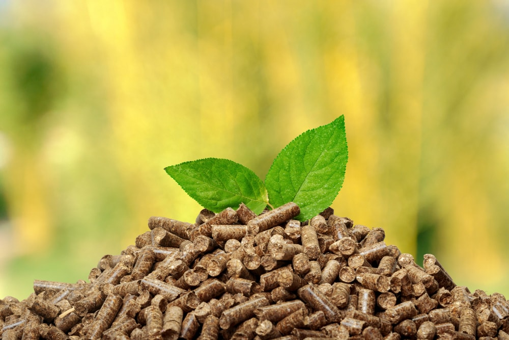 the global energy mix with biomass wood pellets